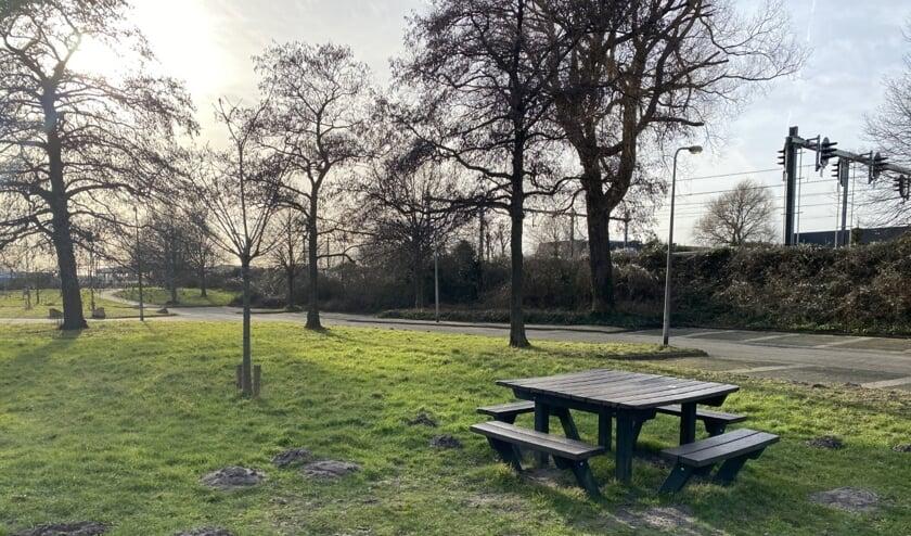 <p>Bij de picknicktafel naast het spoor wordt een Jongeren Ontmoetingsplek (JOP) gemaakt. Foto: VSK</p>