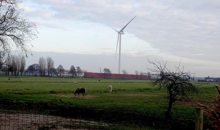 De windturbine in de Vlietzone (foto: Ap de Heus).
