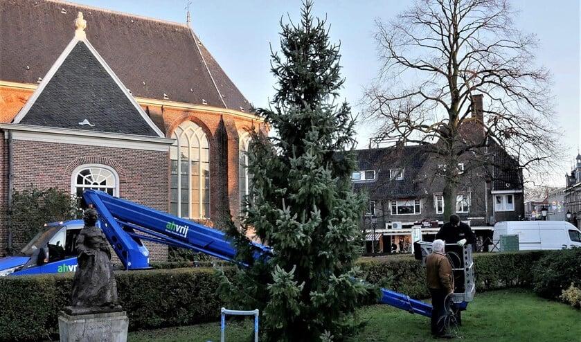 De kerstboom uit Hranice staat weer bij de Oude Kerk in de Herenstraat te Voorburg (foto: Ot Douwes).