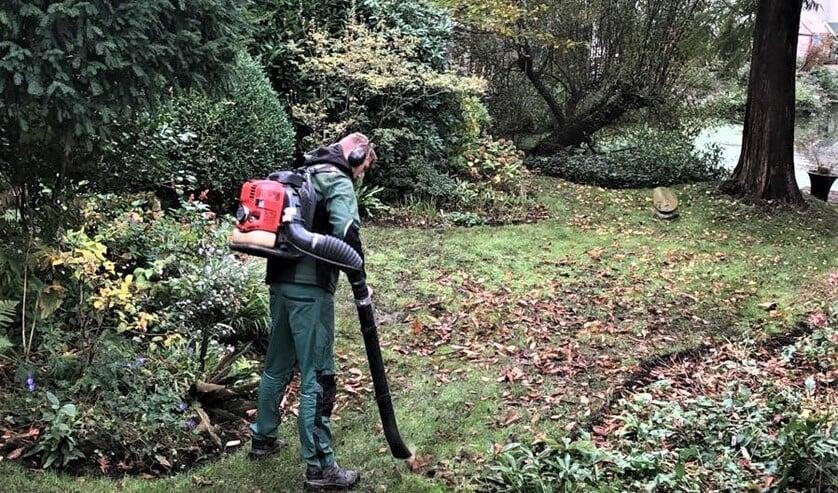 <p>Het project bevatte noodzakelijk onderhoud: onkruid verwijderen, uitdunnen van planten en eventueel verplaatsen en snoeien (foto: pr).</p>