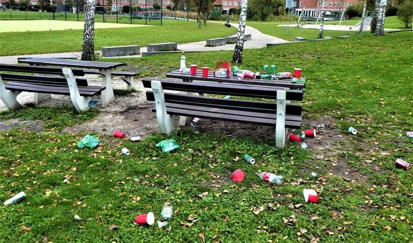 <p>Rommel op en rond de picknicktafels in het park getuigen van een gezellig feestje (foto: Marian Turkesteen). </p>