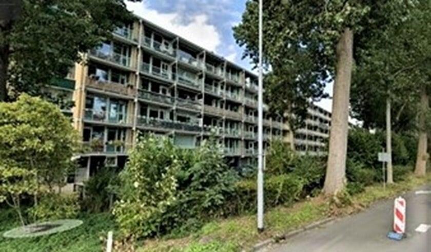 <p>De flats aan de Burgemeester Keijzerlaan langs de Noordsingel in Leidschendam (foto: Streetview).</p>