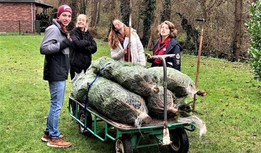 <p>De Explorers van scoutinggroep Sint-Maarten Hildegard verkopen kerstbomen om naar het buitenland op kamp te kunnen gaan.</p>