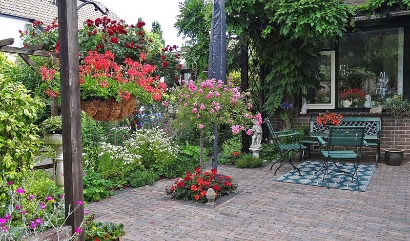 <p>De winnende tuin aan de Teylingen in Leidschendam had het gehele jaar door een bijzondere uitstraling en is een plaatje om naar te kijken. </p>