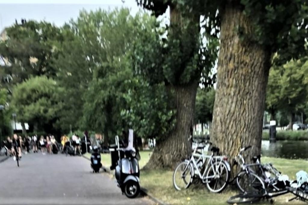 Een grote groep jongeren zorgt in Park Leeuwensteijn voor overlast. Bewoners houden wijselijk afstand (foto: pr).  © Het Krantje