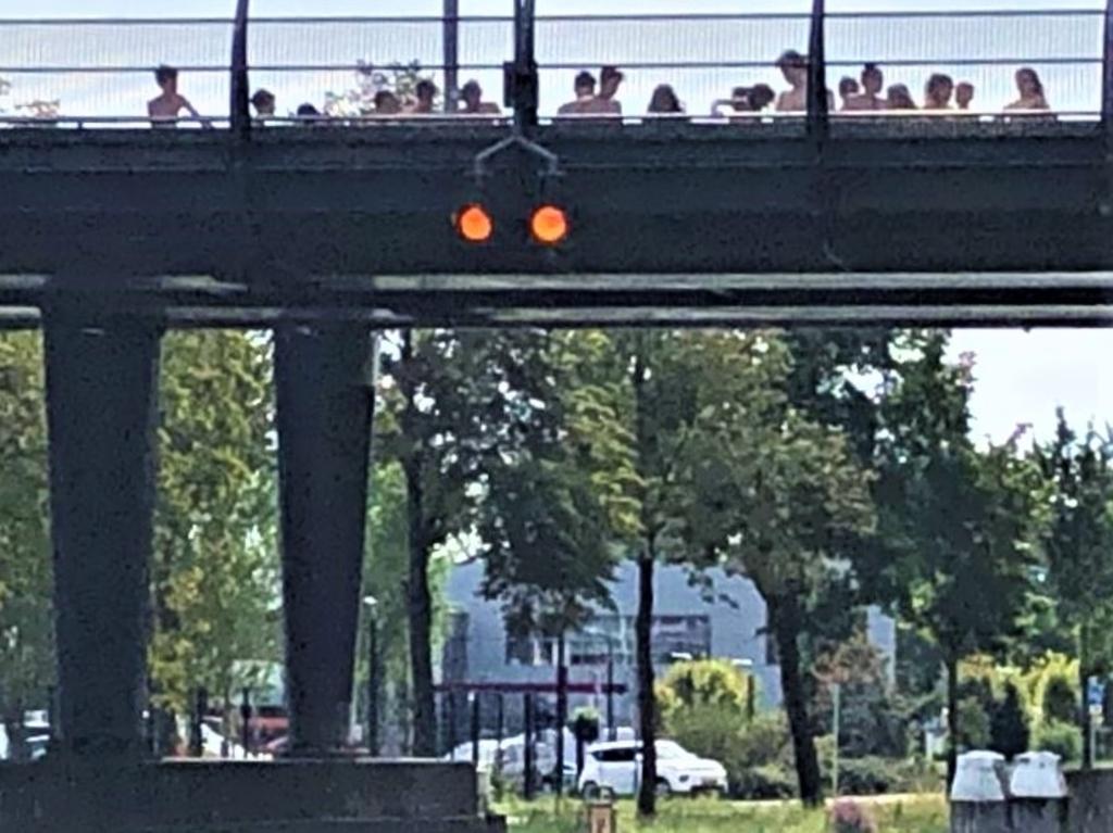 Jongeren houden zich op de spoorbrug op om er vanaf te springen.  © Het Krantje