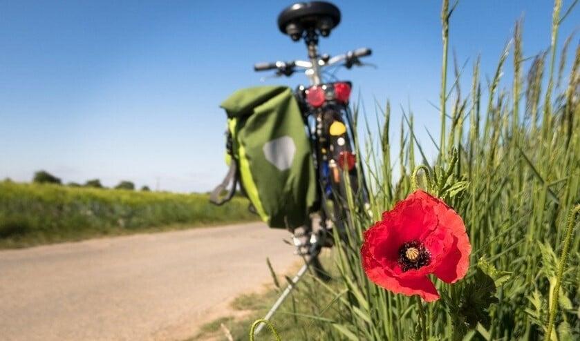 Veel inwoners gaven aan met de fiets op vakantie te gaan.