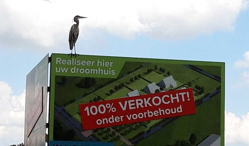 Foto: Jan van der Sman