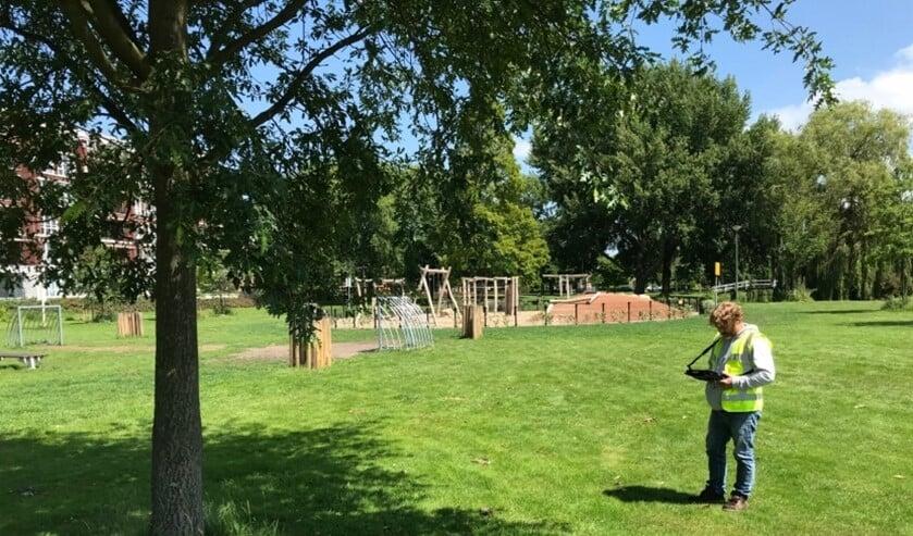 Deze zomer heeft de gemeente de toestand van meer dan 10.000 bomen gecontroleerd (foto: gemeente LV).