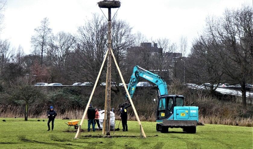 <p>Vandaag hebben medewerkers van www.ooievaarsnesten.nl het oude nest bij Molen de Vlieger neergehaald en een nieuw nest geplaatst (foto: Marian Turkesteen).</p>