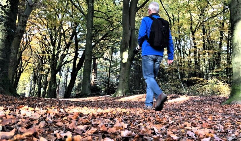 <p>SenW organiseert een historische wandelspeurtocht voor 55-plussers door het centrum van Voorburg.</p>