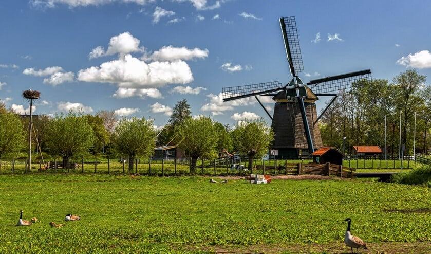<p>Molen de Vlieger (foto: Charles Groeneveld).</p>