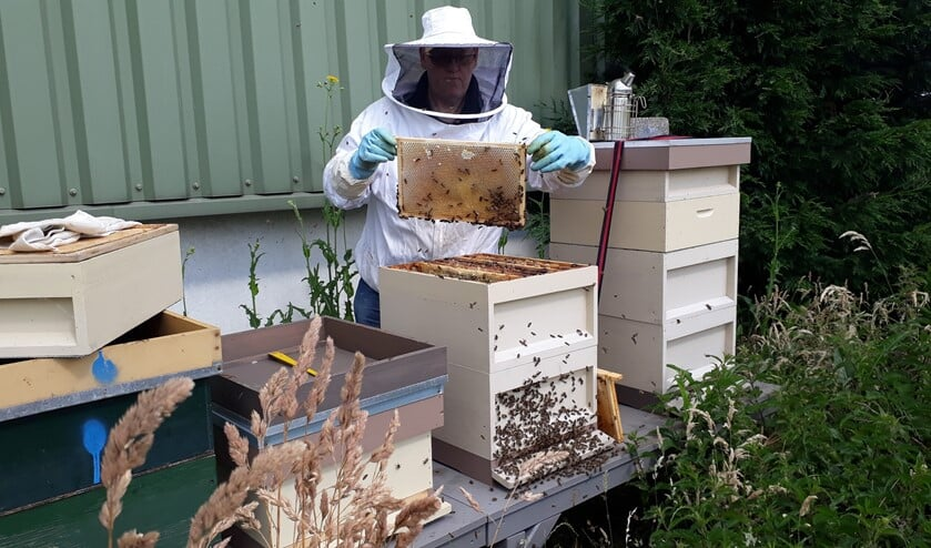 Er wordt onder andere een kijkje genomen bij de bijen