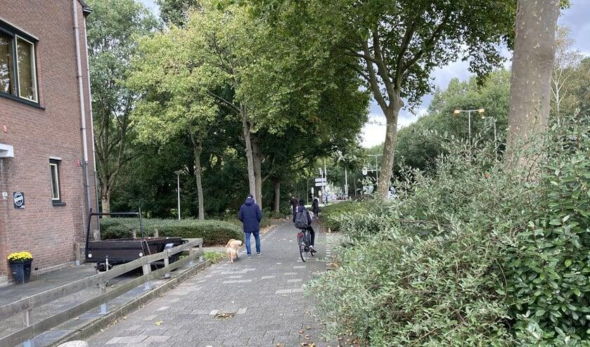 <p>Het voetpad vormt een sluiproute voor fietsers.</p>