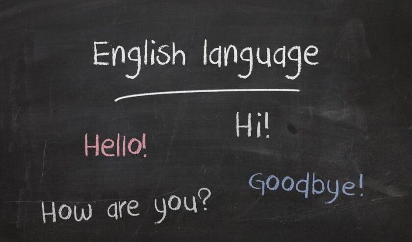 <p>School met &ldquo;Vroegtijdig Vreemde Talen Onderwijs&rdquo; </p>