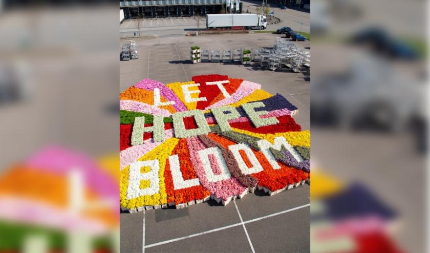 De campagne 'Let Hope Bloom' oogst veel waardering onder consumenten. Foto: (PR)