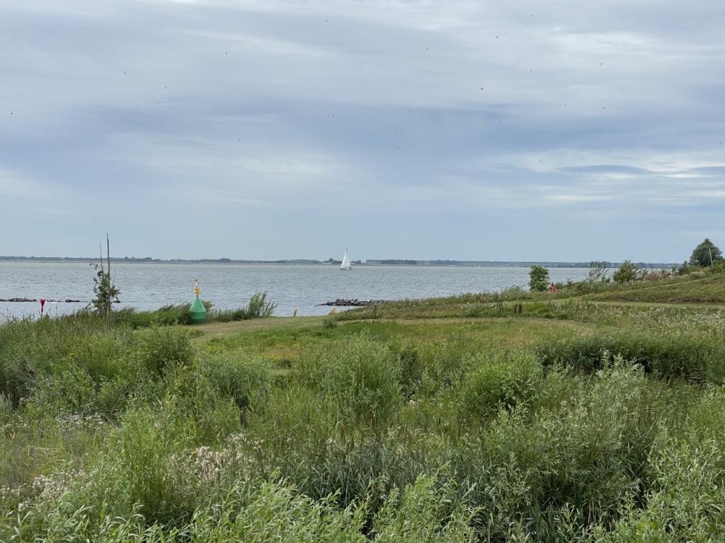 Er is geen doorkomen meer aan richting het strandje (Foto: Wil van Balen) Wil van Balen © Voorne-putten.nl