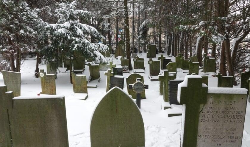 <p>De rooms-katholieke begraafplaats in het centrum van Naaldwijk.<br>Foto: (PR/Aad van Uffelen)</p>