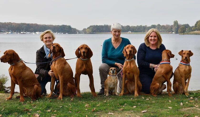 <p>Andrea Nagy, Annette Stolk en Henri&euml;tte Niessing van Stichting Dierenhulp Hongarije met hun honden</p>