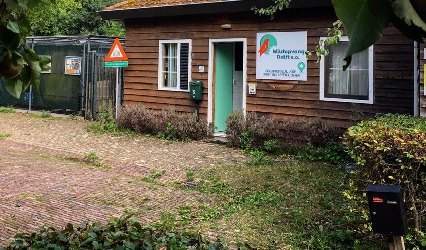 <p>Bij Wildopvang Delft is al enige tijd een gebrek aan ruimte &eacute;n financi&euml;le middelen&nbsp;</p>