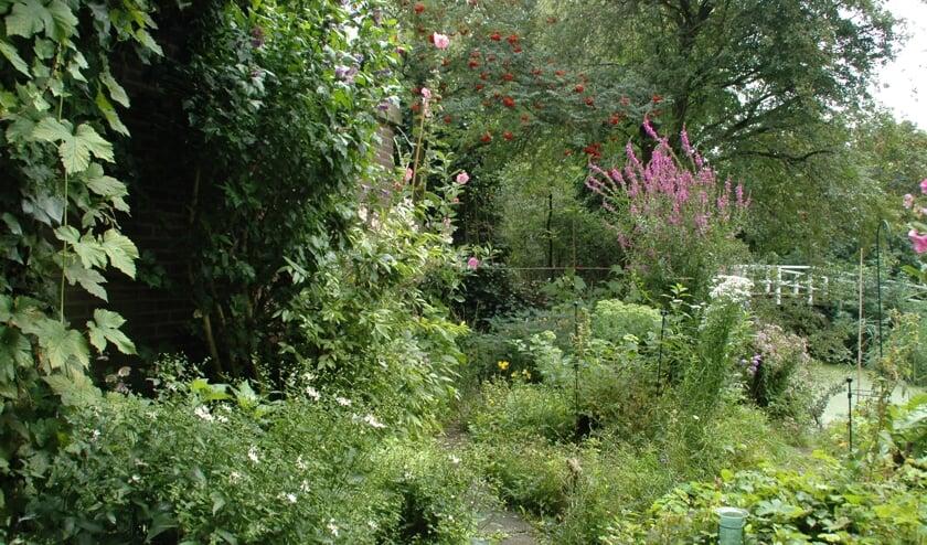 <p>Een natuurrijke tuin</p>