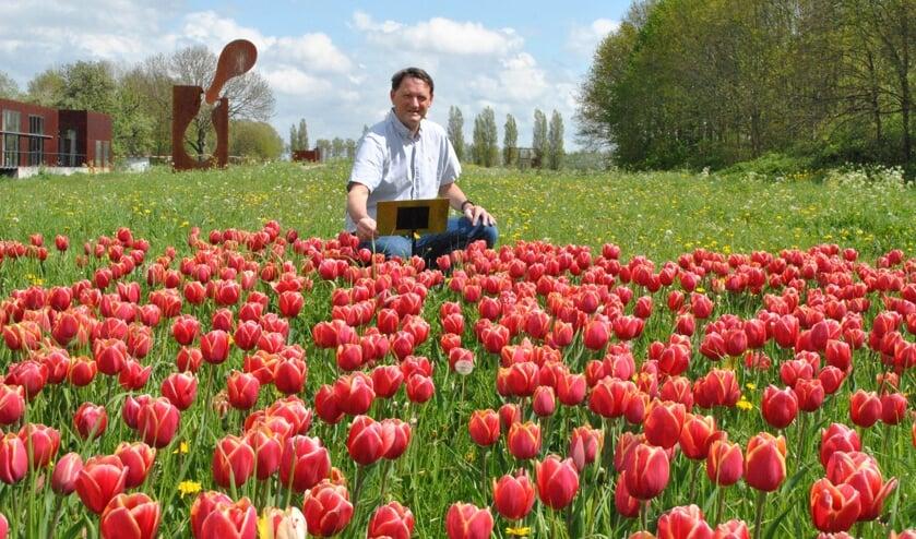 <p>Voorzitter Hans Lodder bij het tulpenveldje, waar hij deze week een plaatje onthulde met daarop informatie over het doel van de tulpenactie </p>