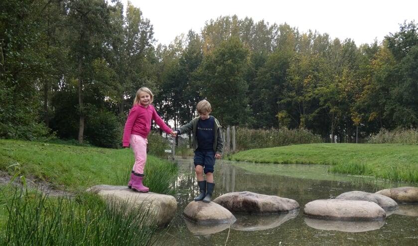 <p>Dannique Klaassen (6) in het roze durft samen met Maas (8) toch nog een keer over de glibberige stenen naar de overkant.</p>