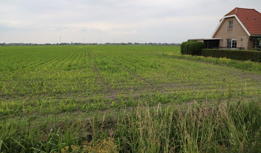 In de Zuidplaspolder is het nieuwe dorp van buurgemeente Zuidplas gepland.