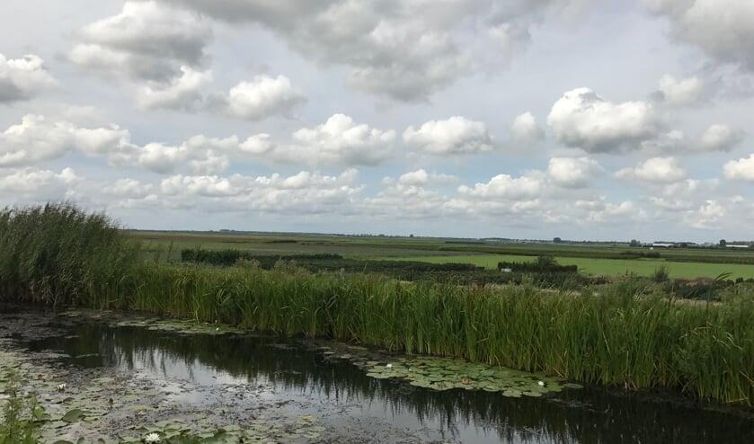 <p>De polder die wordt doorsneden door de Verlengde Bentwoudlaan.</p>