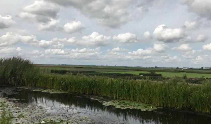 <p>De polder wordt doorsneden door de Verlengde Bentwoudlaan.</p>