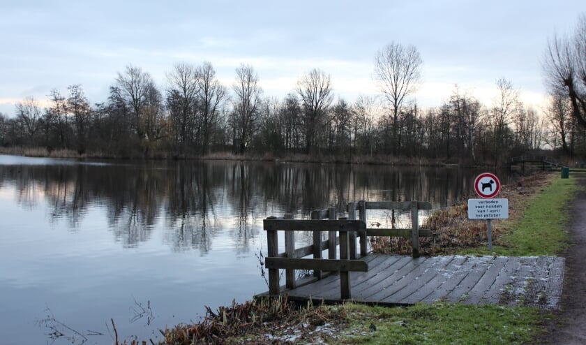 <p>&#39;t Weegje waar met mooi weer ook nog wel eens een duik wordt genomen. (archieffoto Hart van Holland)</p>