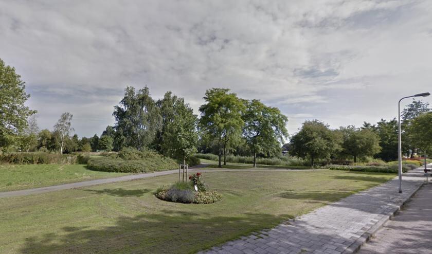Het Bückeburgpark moet ook worden aangepakt.