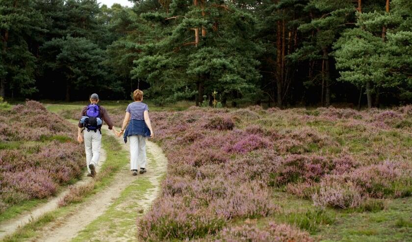 Het thema van deze wandeling is de herfst, het jaargetijde van oogsten en loslaten.