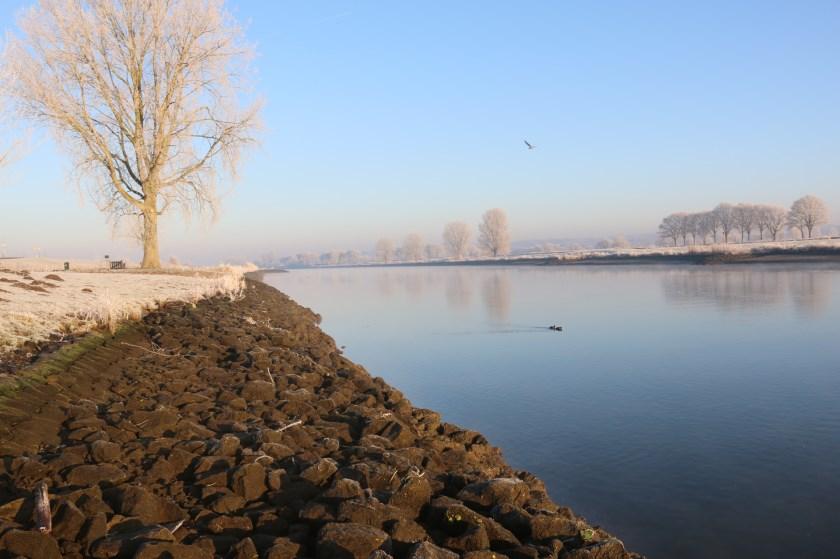 Extreem lage waterstand in de Maas.