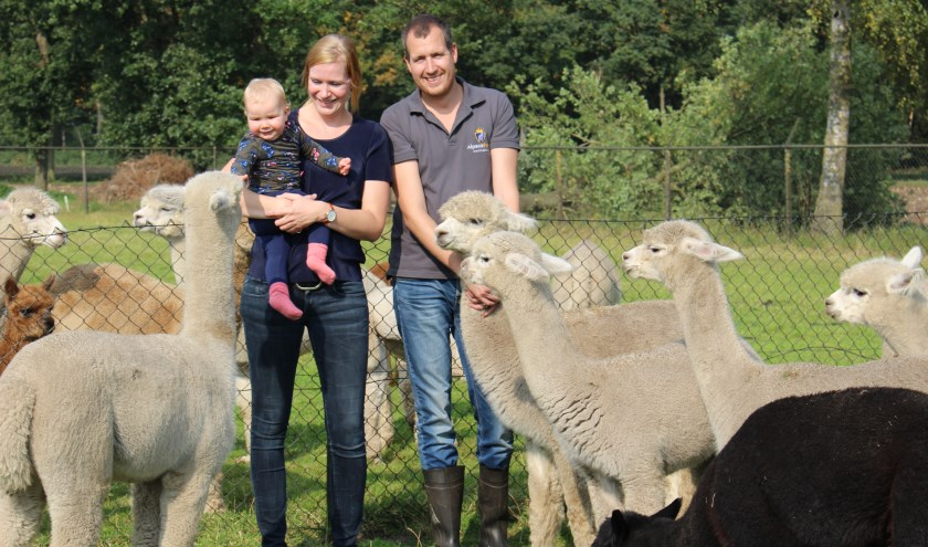Willem-Mathijs, Anne en Evi (1) bij hun alpaca's.