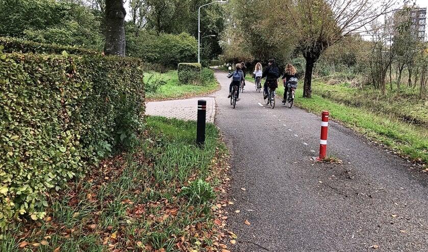 Alleen het stukje vanaf het rode paaltje tot aan de Vorstenbosscheweg is voorzien van wegmarkering. Te weinig volgens sommigen.