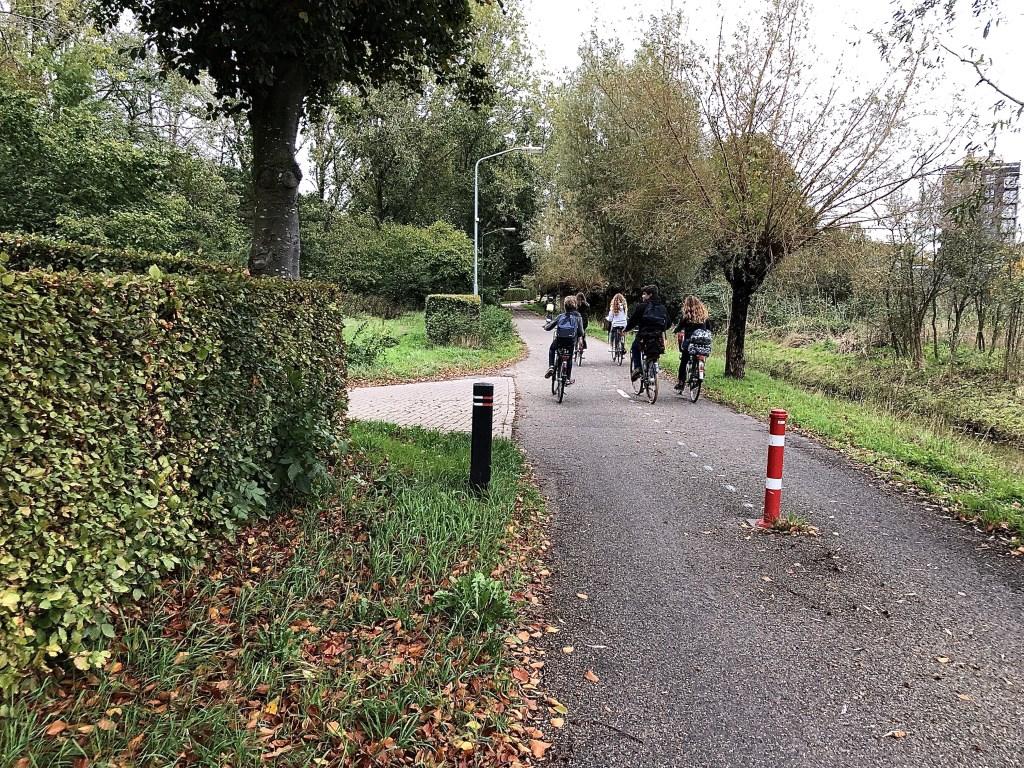 Alleen het stukje vanaf het rode paaltje tot aan de Vorstenbosscheweg is voorzien van wegmarkering. Te weinig volgens sommigen.   © Kliknieuws Veghel