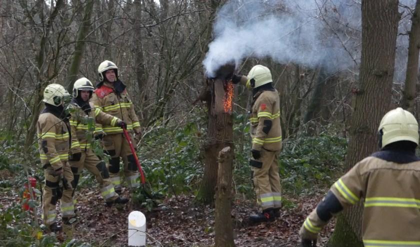 Brandweer opgeroepen voor brandende boomstronk. (Foto: Thomas)