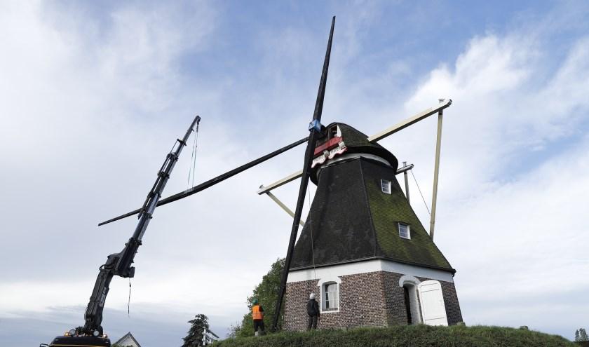 De Mariamolen in Haps krijgt nieuwe wieken. (foto: SK-Media)