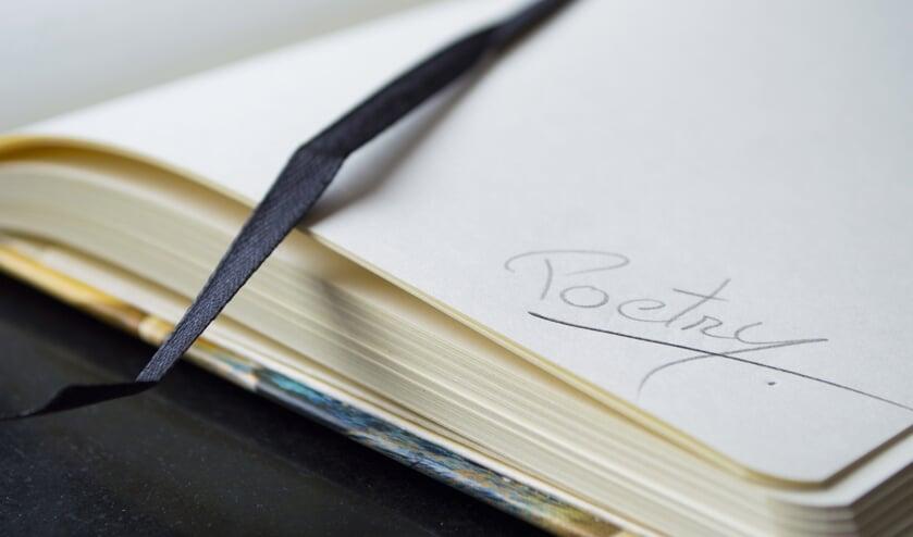 Cuijkse raadsleden gaan vanaf komende week een column schrijven voor De Maas Driehoek