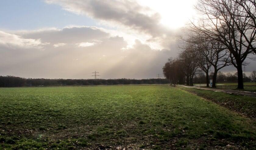 Beoogde locatie voor een zonnepark aan de Sambeeksedijk.