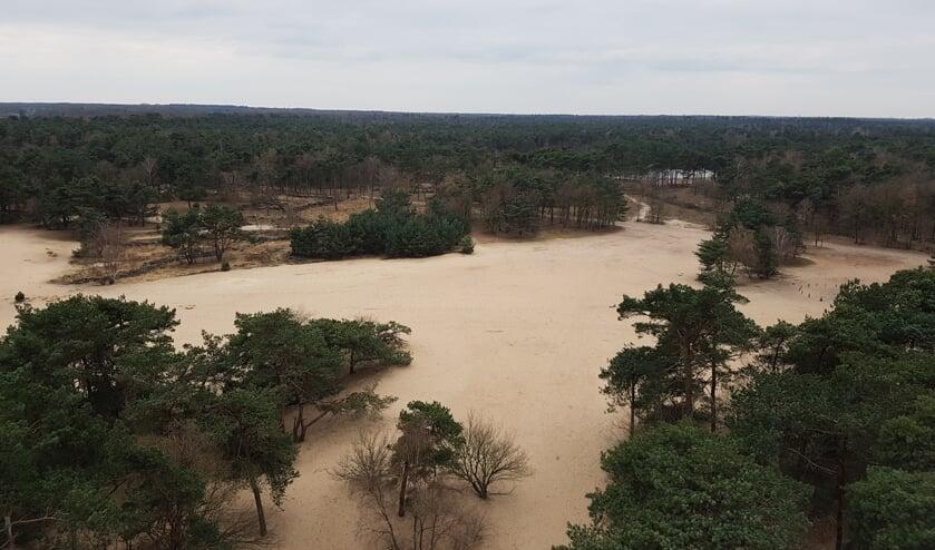 Het uitzicht vanaf de uitkijktoren in Herperduin.