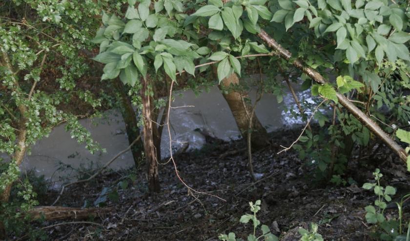 Via de struiken is er een betonachtige substantie de sloot in laten lopen.