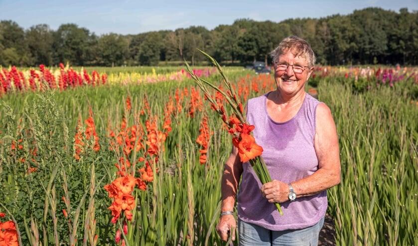 Mien Denissen tussen de gladiolen. (foto: Peter Noy)