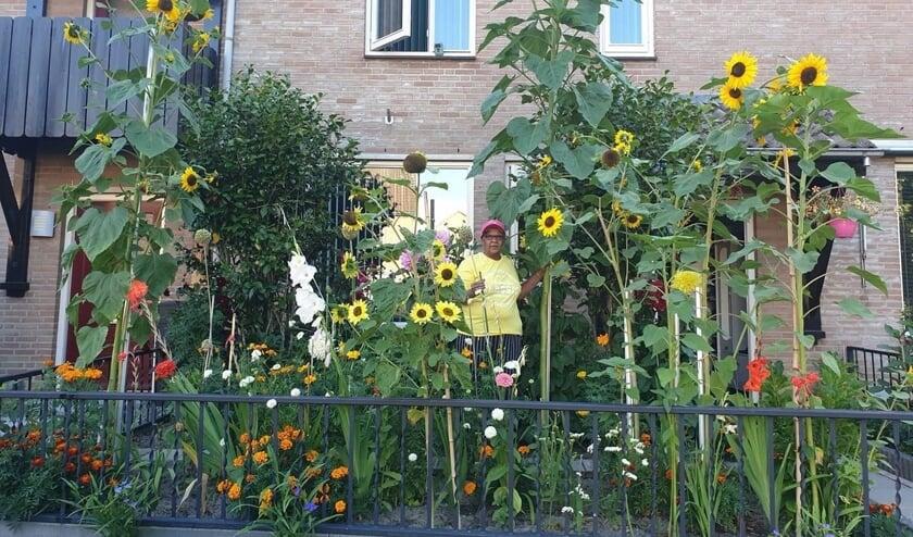 """Sonja tussen de gigantische zonnebloemen: """"Ik vind dit zo bijzonder!"""""""