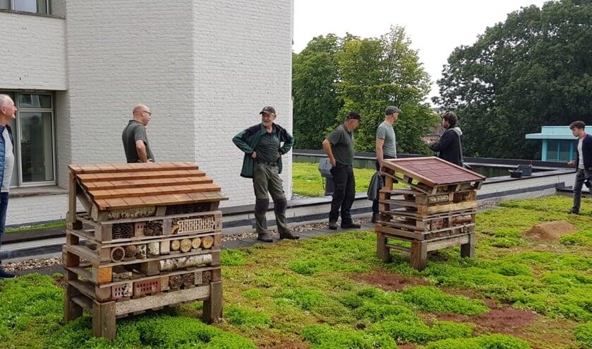 Bijenhotels geplaatst op het groene dak van het Osse gemeentehuis. (Foto: Tonnie van Hooff, Twitter)