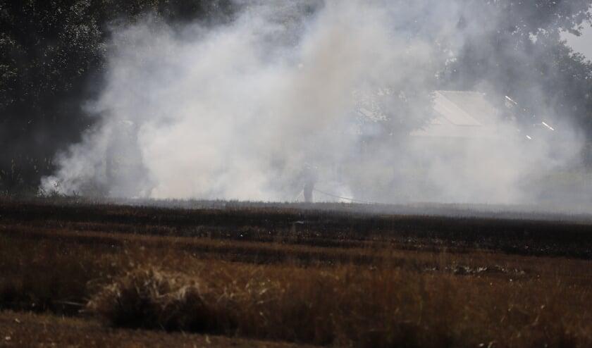 Ongeveer een halve hectare zou in vlammen zijn opgegaan.