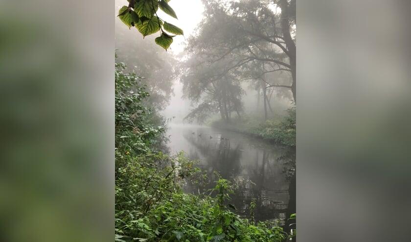 OSS | We nemen afscheid van het mooie weer. De komende dagen gaat de temperatuur naar beneden en mogelijk krijgen we vanaf het weekend regen. Dinsdagochtend was het mistig. Anke Herman maakte deze foto van eendjes in het park aan de Ussenstraat.
