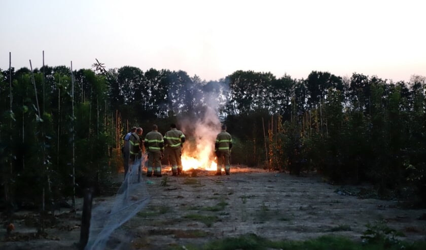 De brandweer laat de takjes gecontroleerd uitbranden.