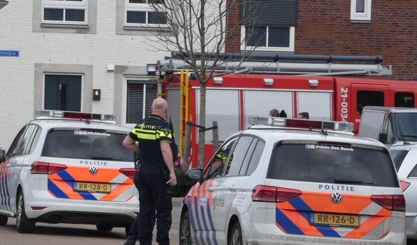 Hulpdiensten opgeroepen voor brandje in Heesch. (Foto: Thomas)